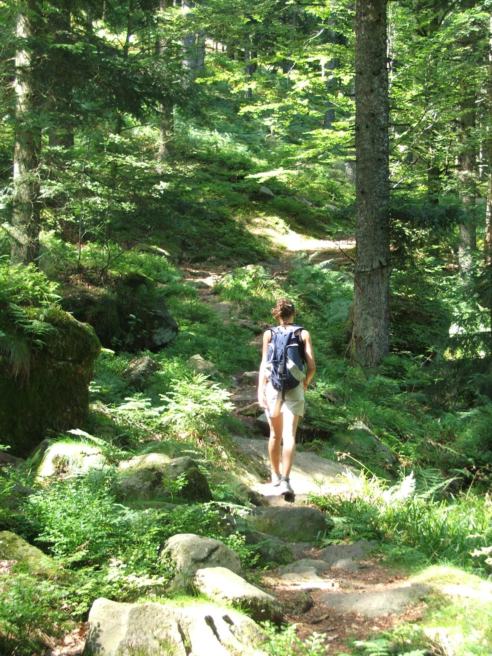 se ressourcer en Vosges